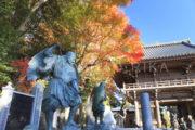 [金運、健康運]高尾山 薬王院(東京)