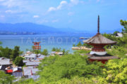 [浄化再生]厳島神社(広島)